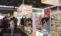越南食品征服欧洲市场