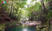 征服五湖和杜鹃瀑布的探险之旅