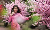 Xuân bên em - Be with you in spring