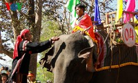 Elephant racing festival in Dak Lak opens