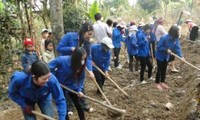 Youth's vanguard role in Lai Chau's new rural development