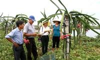 Khanh Thien – the first commune to meet the new rural development criteria in Ninh Binh