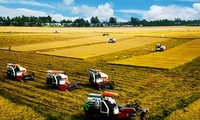 New cooperative models boost agricultural development