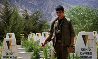 Some 260 PKK members killed in Turkey air strikes