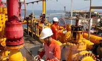 Gas collection and distribution system in Thai Binh inaugurated