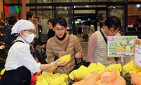 Vietnamese mango promoted in Japan
