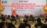 Meeting to mark Vietnam's First General Election held in Da Nang
