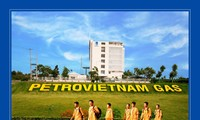 Developing Vietnam's petro-gas to international level