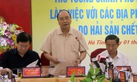 PM Nguyen Xuan Phuc: Resolutely deal with law violators in environmental incident