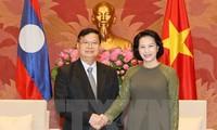 Vietnam, Laos enhance legislative ties