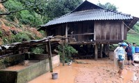 Provinces recovered from Dianmu storm consequences