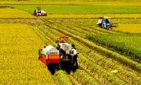 Agricultural restructuring be accompanied by appropriate growth model