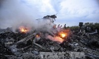Malaysian lawyers propose bringing MH17 case to ICC