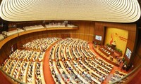 Reform in National Assembly performance
