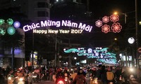 Lunar New Year celebrated nationwide
