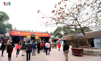 Festival of Tran Thuong Temple and Seal-stamp opening ceremony at Tran temple