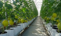 Capital for high-tech agriculture