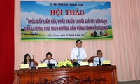 Hau Giang hosts conference on high-quality rice production chain