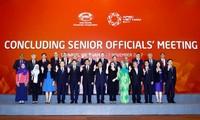 APEC 2017: Vietnam's contribution to realizing Bogor Goals