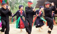 Vietnam attaches importance to promoting cultural diversification