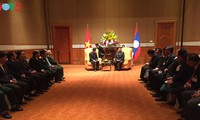 Lao President meets Vietnam-Laos Friendship Association