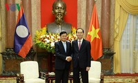 President Tran Dai Quang: Vietnam treasures ties with Laos
