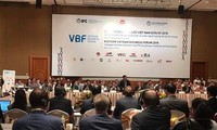 Domestic, foreign businesses urged to cooperate for common interests