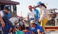 Da Nang works to increase traceability of seafood products