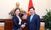 Deputy PM Pham Binh Minh receives outgoing Italian Ambassador