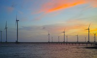 Bac Lieu boasts potential for wind power development