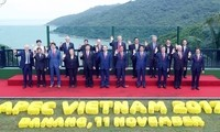 APEC remains focus of Vietnam's foreign policy