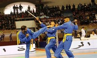 Vovinam's influence worldwide