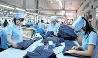 Vietnamese enterprises benefit from CPTPP