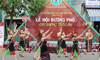 Brocade carnival highlights first Vietnam brocade culture festival