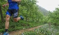 Vietnam Trail Marathon 2019 begins