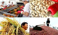 Vietnam's farm produce find inroads to demanding markets