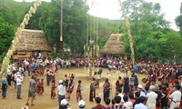 Activities to welcome Tet at Vietnam's Ethnic Culture and Tourism Village