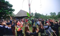 """""""Spring colours across Vietnam"""" Festival opens in Dong Mo"""