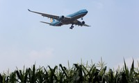 US green-lights direct flights from Vietnam