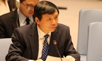 Vietnam's chances of becoming a UN Security Council member