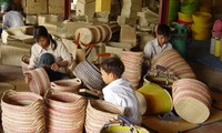 Vietnam acts to prevent child labor