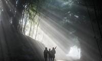 Les sites photogéniques de Lao Cai