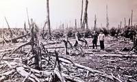 Conséquences de la dioxine au Vietnam et les actions pour y remédier