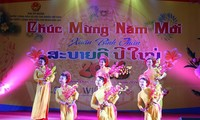 Aktivitas-aktivitas menyambut Hari Raya Tet di kalangan diaspora Vietnam di luar negeri
