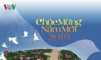 Pasar kalender musim semi 2019 yang unik di Kota Ho Chi Minh