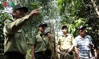 Para penjaga hutan pada musim kemarau di Provinsi Dong Nai