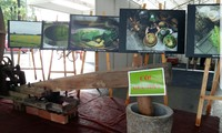 Kejuruan membuat emping  Desa Me Tri-Pusaka budaya nonbendawi nasional