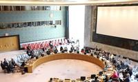 Viet Nam mencalonkan diri masuk DK PBB: Tanggung-jawab demi satu dunia yang damai