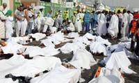 Saudi King orders safety review for Hajj pilgrimage