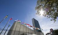 Vietnam y la ONU durante los 40 años de trabajar codo con codo